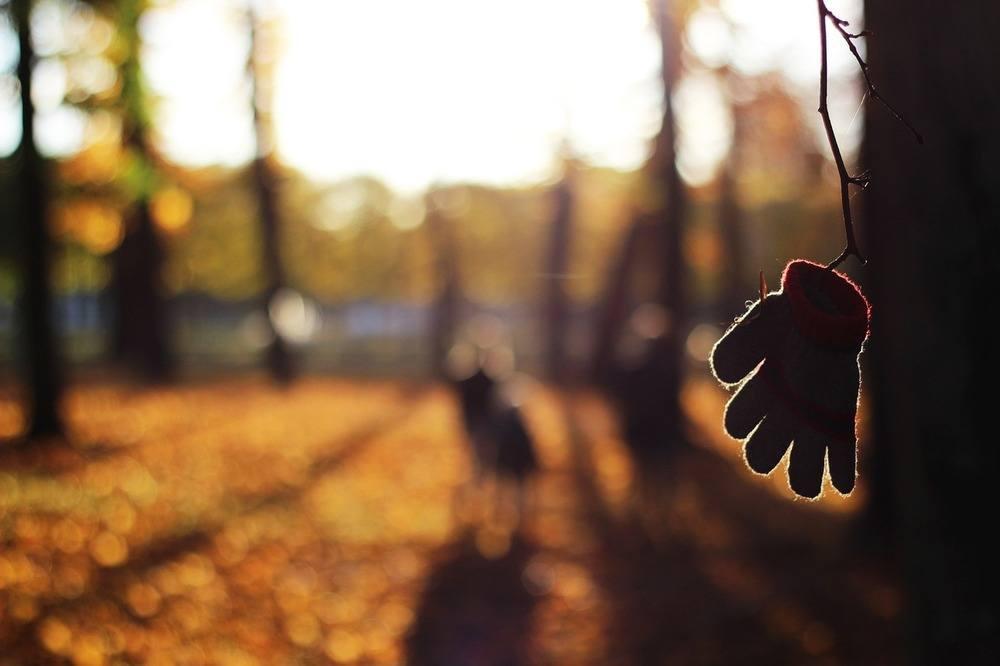 Handskas med hösten på rätt sätt