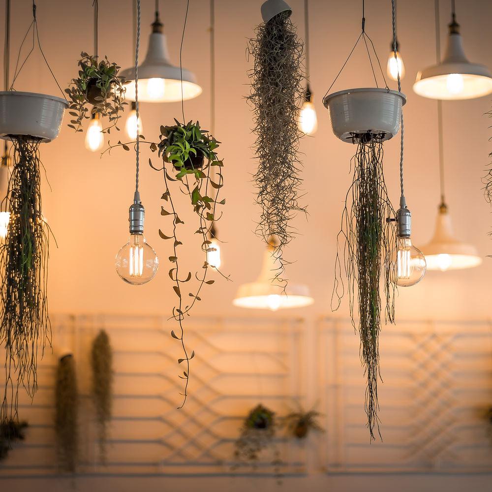 Lampor för den klassiska, moderna och experimentella
